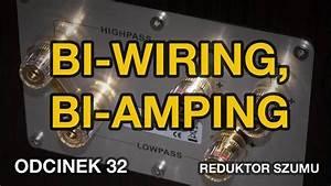 Bi-wiring  Bi-amping - Odc 32  Reduktor Szumu
