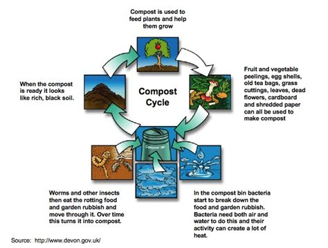 Compost The Exploring Our World Wiki