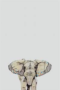 animals wallpapers   Tumblr