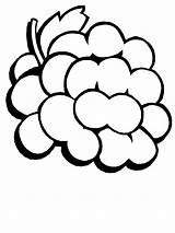Coloring Grapes Pages Fruit Easily sketch template