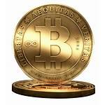 Bitcoin Royal Icon Kings Bitcoins Funded Payouts
