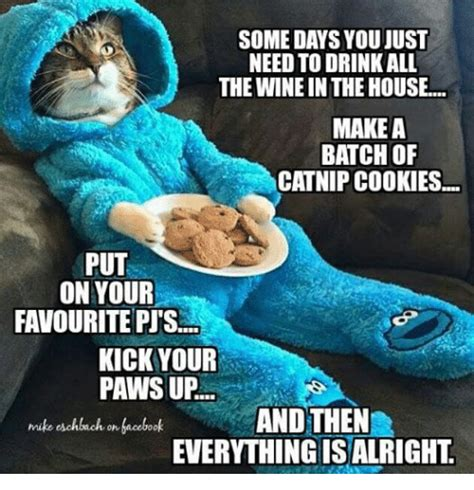 Cookie Memes - some days you just need todrinkall the winein the house make a batch of catnip cookies put on