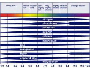 Soil pH Nutrient Availability Chart