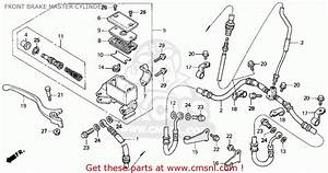 Honda Recon 250 Parts Diagram 1998 Html