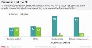 YouGov | Small business owners more eurosceptic than big ...