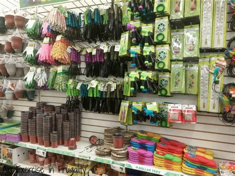 Dollar Tree Gardening Tools  An Exercise In Frugality