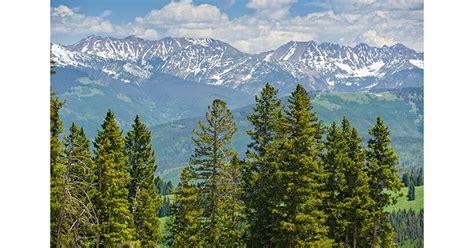 top  national forests  hunt