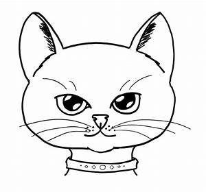 Drawing, A, Cat, Face