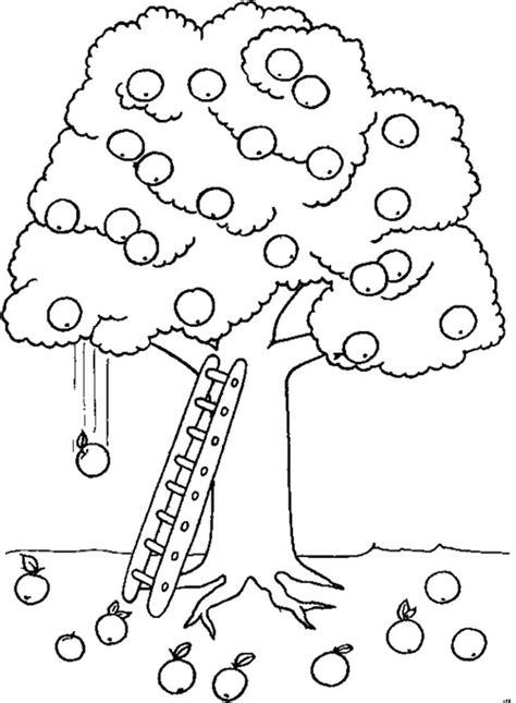 apple tree drawing  getdrawings