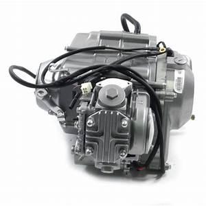 E Leite 50cc Honda Engine Diagram