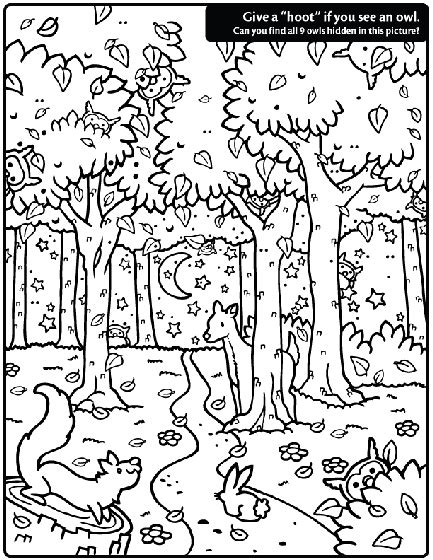 hidden owl find coloring page crayolacom