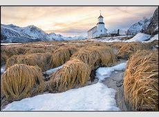 Norwegen Lofoten und Tromsö » Michael Stein Photography