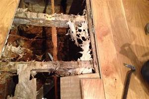 Dry rot treatment wood and wet rot repair for How to dry wet wood floor