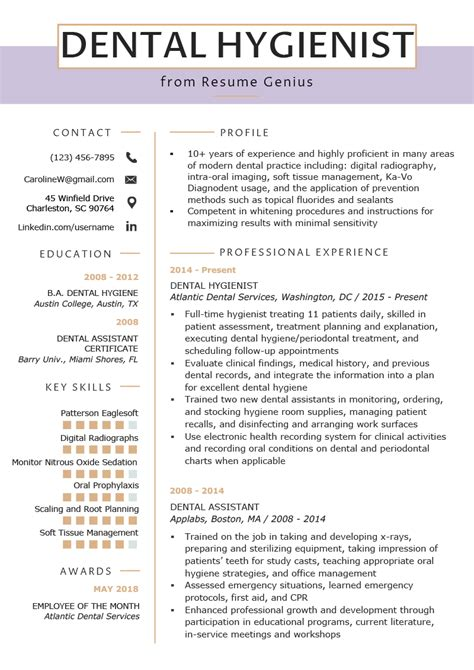 Dental Resume Templates by Dental Hygienist Resume Template Bijeefopijburg Nl