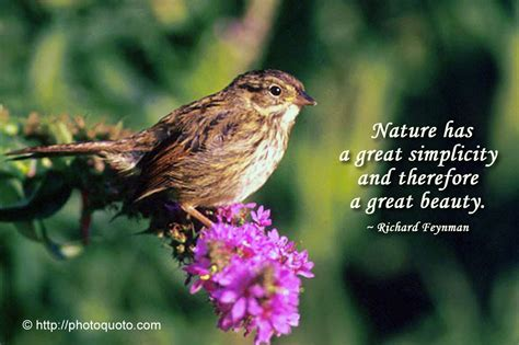 Famous Quotes About Natures Beauty Quotesgram