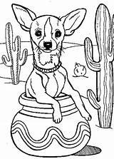 Coloring Chihuahua Cactus Pages Dog Tree Pottery Inside Printable Drawing Cartoon Fiesta Getdrawings Netart Getcolorings sketch template