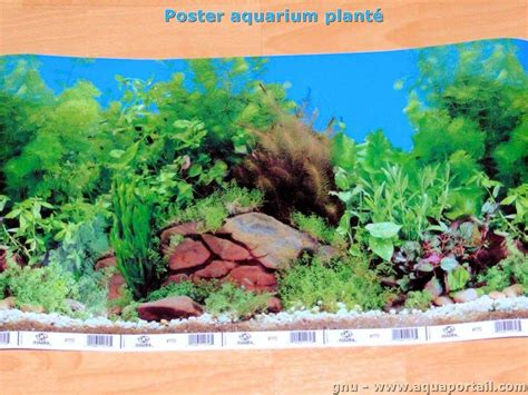 comment fixer un poster de fond d aquarium explications