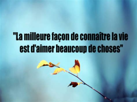citation de l amour dans la vie belle citation sur la