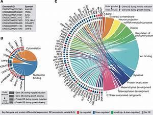 Integrated Comparison Of Gwas  Transcriptome  And