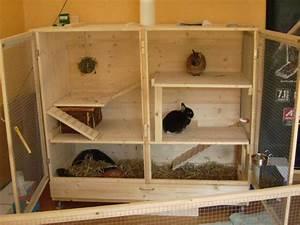 Kaninchenstall Selber Bauen Anleitung Kostenlos : bauanleitung kaninchenstall picture to pin on pinterest ~ Lizthompson.info Haus und Dekorationen