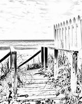 Coloring Adult Boardwalk Scene Digital Scenes Ocean Printable Fence Adults Landscape Pattern Stained Glass Sheets Printables Gray Sunrise Drawings Tropical sketch template