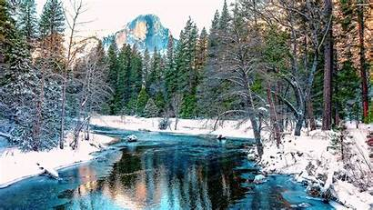 Forest Winter Snow Wallpapers Mountain Amazing Tree