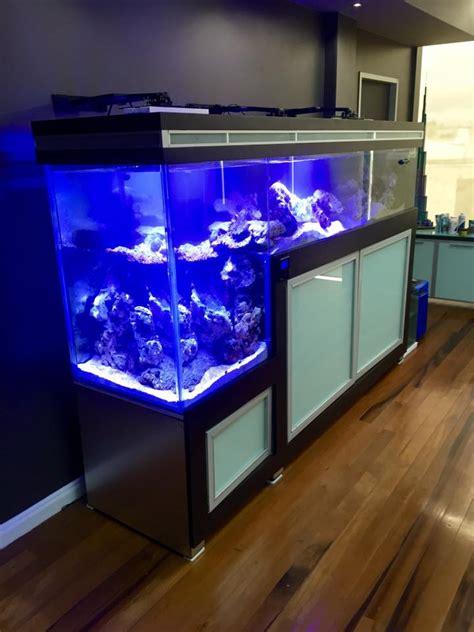 drop tank aquarium 230g zone reef neptune breakdown reef2reef apex dos