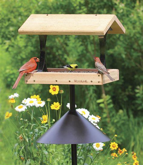 squirrel proof pole mounted bird feeder unique bird feeder