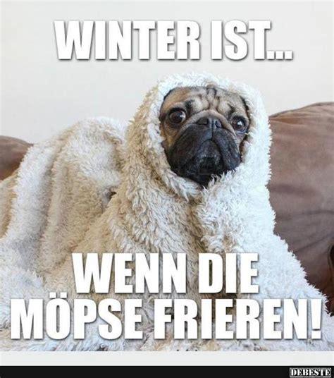 lustige winter bilder winter ist lustige bilder spr 252 che witze echt lustig