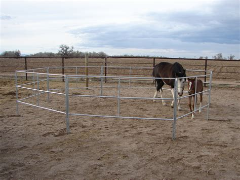 horse portable corrals trailer travel safe go searching secure market place