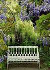 garden bench: I really want a beautiful bench to put under beautiful garden benches