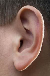 Lymph Nodes In Front Of Ear