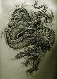 Unkind black-and-white asian dragon tattoo design ...
