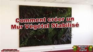 Comment Lessiver Un Mur : comment cr er un mur v g tal stabilis mat riel mur ~ Dailycaller-alerts.com Idées de Décoration