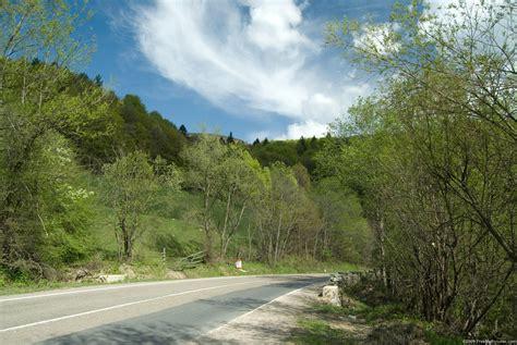 Spring Road - FREEBigPictures.com