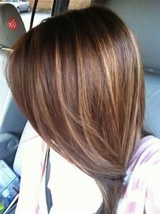 Dark Brown Hair with Caramel Highlights | Haircuts ...