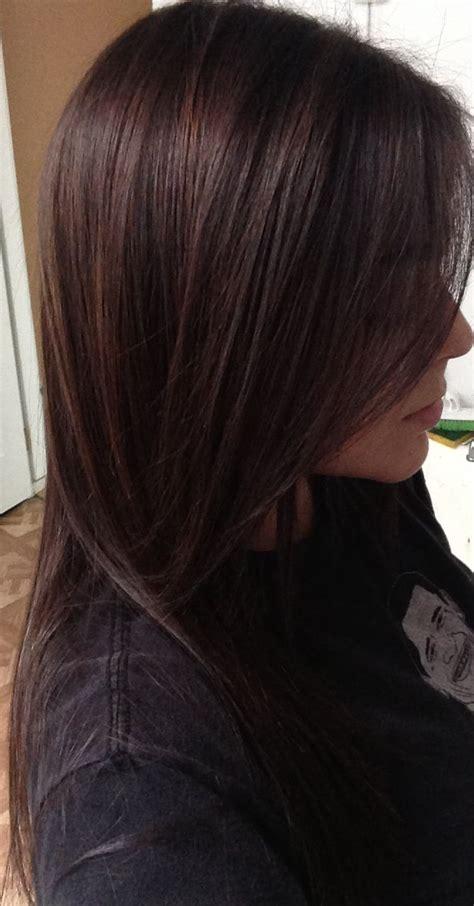 5n hair color paul mitchell pm shines half 4n half 5n hair
