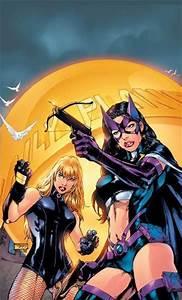 Black Canary & Huntress - Gotham Girls Photo (9417930 ...