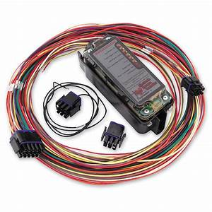 Custom Motorcycle Wiring Harness