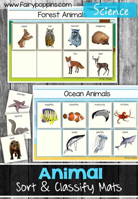 Animal Sort and Classify Fairy Poppins
