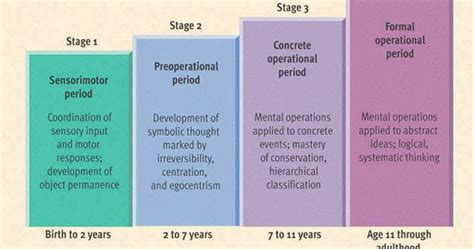 chart showing  piagets  stages