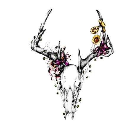 deer skull tattoos ideas  pinterest