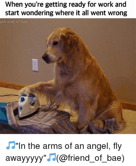 In The Arms Of An Angel Meme - 25 best memes about friends friends memes