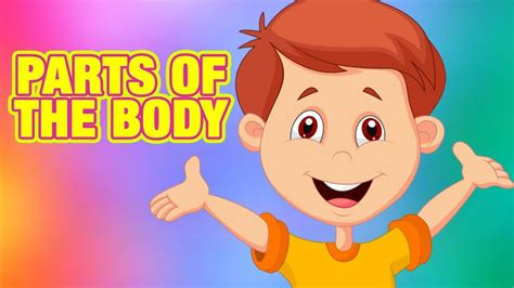 parts   body   english learning body parts