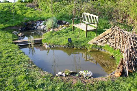 Garden Pond : How To Attract Wildlife Into The Garden With A Pond |the