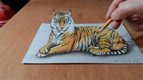 trick art   draw   tiger time lapse youtube