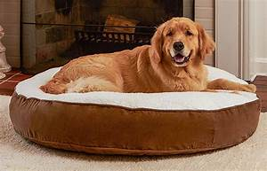the best large dog beds for big breeds or doggy families With big round dog bed