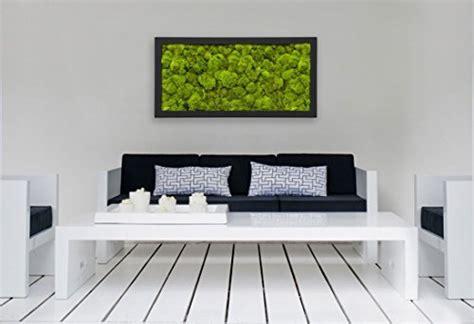 Wandgestaltung Mit Bilderrahmen by Moosbilder Wandgestaltung Bild Mit Moos Und Bilderrahmen