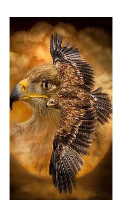Spirit Eagle Native American Animal Indian Guides