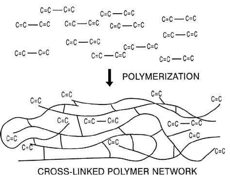 schematic representation of the polymerization of dimethacrylate scientific diagram